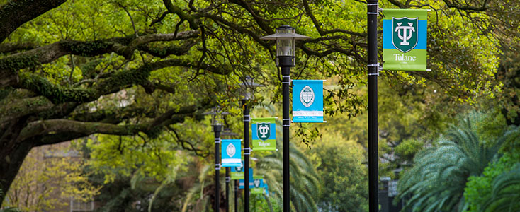 Tulane School of Professional Advancement flags on street lamps in New Orleans, LA